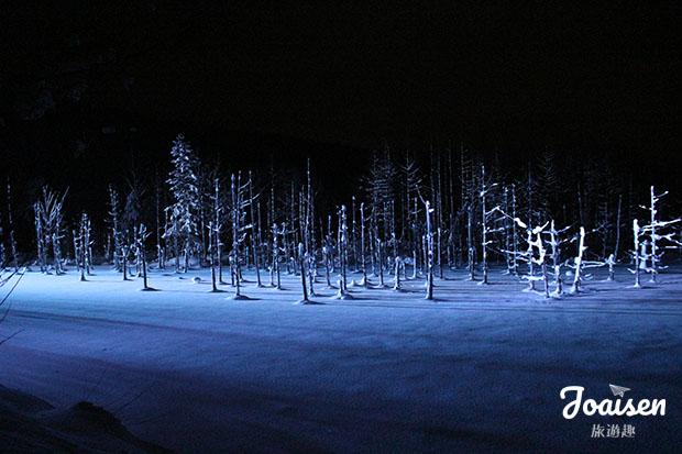 【日本北海道】迷幻藍色世界!觀賞美瑛青池點燈