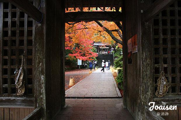 爬上階梯透過窄門看到紅葉
