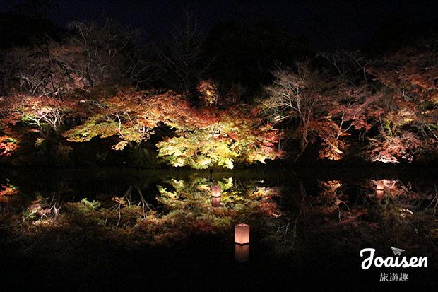 【日本佐賀】武雄「御船山樂園」欣賞美麗夜楓
